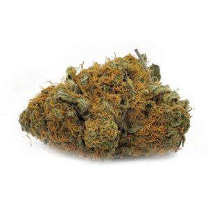 Buy Citrus Haze EZ Weed Online