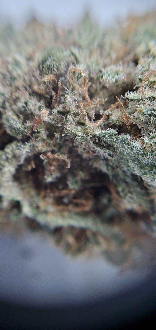 Cherry Diesel Flower Close Up EZ Weed Online