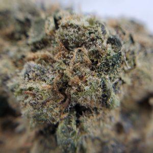 Gelato cookies flower EZ Weed Online