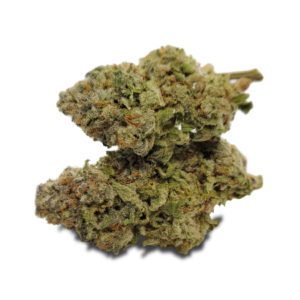 Buy Mimosa by Gastown Collective EZ Weed Online