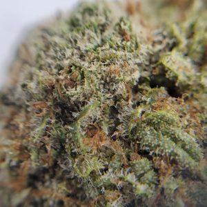 Pineapple Jack Flower Close Up EZ Weed Online