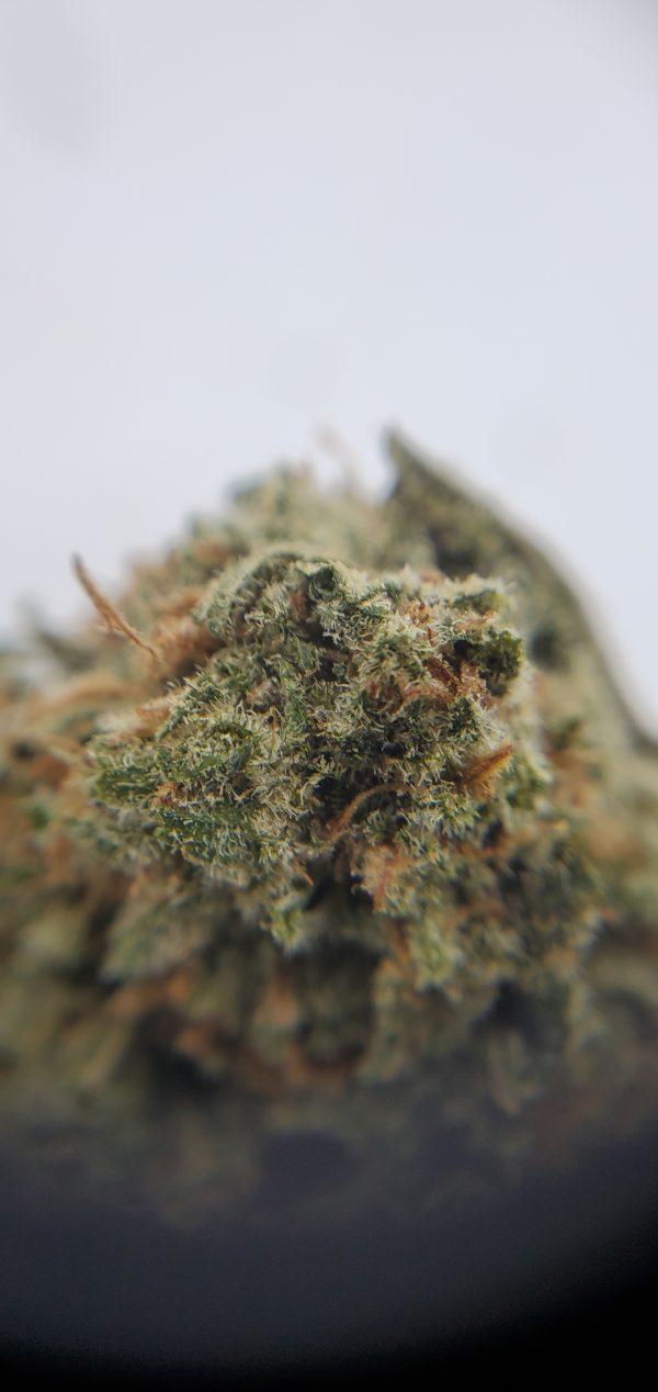 Buy Rockstar 99 Oz Deal EZ Weed Online Closeup