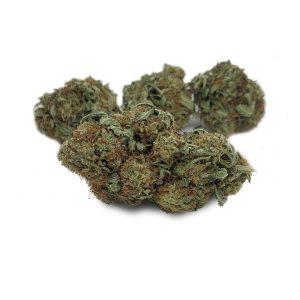 Buy Juicy Fruit 79 Oz EZ Weed Online