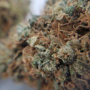 Buy Couchlock EZ Weed Online Closeup